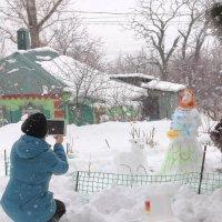 Выпал снег :: Юрий Гайворонский