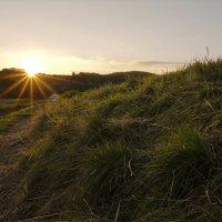 Вечерком гуляет солнце по земле :: Татьяна Кадочникова