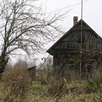 Деревенский пейзаж :: Виктория