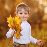 Осень золотая :: Светлана Бурман