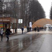 Парк в Сокольниках :: Владимир Болдырев
