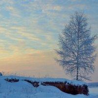 Зимой в Ильинском :: Валерий Симонов