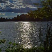 Вечер на реке :: Валентина Данилова