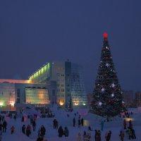 Ёлка, зимний городок... :: Николай