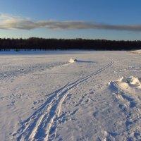 IMG_9379 - С Рождеством, друзья и просто приятные мне люди! :: Андрей Лукьянов
