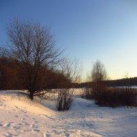 IMG_9442 - С Рождеством, друзья и просто приятные мне люди! :: Андрей Лукьянов