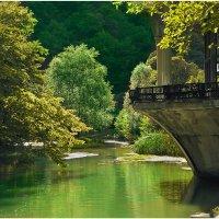 Абхазия :: Николай Пакаля
