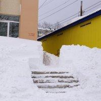 зима :: Владимир Артюхов