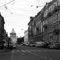 Петербургский монохром :: Дарья Русанова