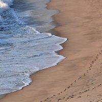 След на песке :: Leonid Korenfeld