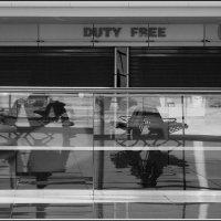 Duty free :: Михаил Розенберг