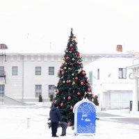 Елочка в музее :: Екатерина Василькова