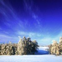 Зимнее небо :: Константин Филякин