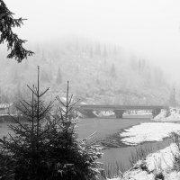 первый снег-2 :: Александр Потапов