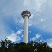 Busan tower :: Василий Слободенюк