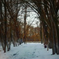 Зимняя набережная :: Polina Rastaturova