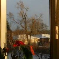 С добрым утром! :: Юрий Поляков