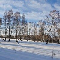Зима :: Николай Мальцев