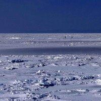 Амурский залив :: Александр Морозов