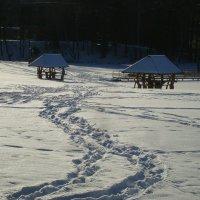 Зима :: rimgis