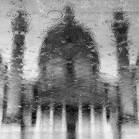 Дождь в Вене :: Олег Патрин