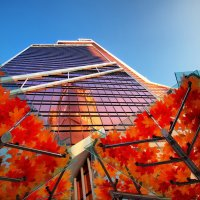 Листья тополя падают с ясеня... :: Юрий Кольцов