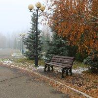 Одинокая скамейка :: Марсель Давлетов