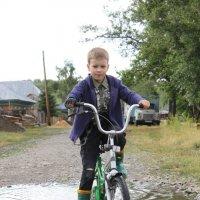 Велосипедист :: Екатерина Белка