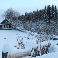 У леса на опушке,жила зима в избушке... :: Татьяна Тимохина