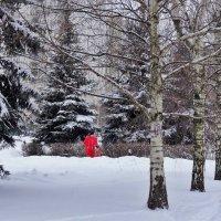 Зимняя прогулка :: Татьяна Симонова