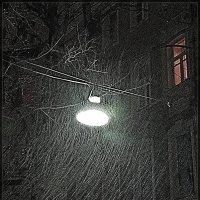 мокрый снег :: Natalia Mihailova