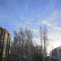 Городской пейзаж. :: Мила Бовкун