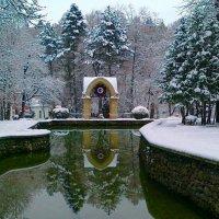 снежный парк :: Алексей Меринов