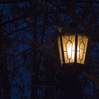 Свет в потёмках :: Денис Стельмахов