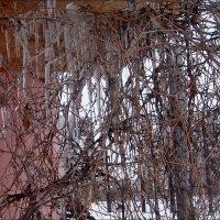 Ледяной шатёр :: Нина Корешкова