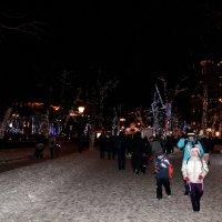 Новогодние гуляния :: Лариса Корженевская