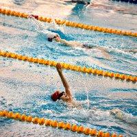 Олимпийский жжёт нас всех огонь... :: Ирина Данилова