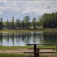 Лесное озеро :: Елена Ерошевич