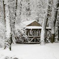 Краснодарская зима :: Денис Стельмахов
