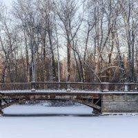 Зимний парк :: Сергей Залаутдинов