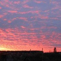 Летний закат :: Вера Андреева