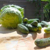 Овощи :: Миша Любчик