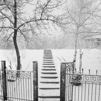 В гости к снегу :: Дмитрий Макеев