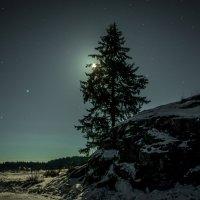 ночь в  Карелии :: Евгений Киреев