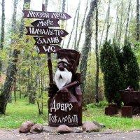 Добро пожаловать!!! :: Дмитрий Иншин