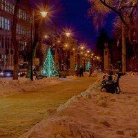 Городской сквер :: Юрий Стародубцев