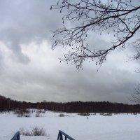 IMG_0205 - Канун Старого Нового года :: Андрей Лукьянов