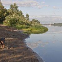 на реке Томь :: Владимир Мочалов