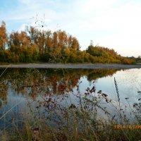 Река осенью :: оксана