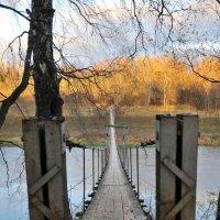 На солнечную сторону :: Андрей Куприянов